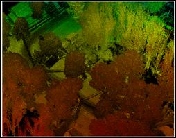 Point Cloud image